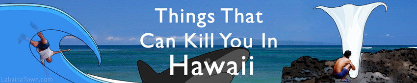 Things That Can Kill You in Hawaii