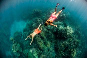 couple snorkeling above the reef